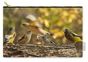 Busy Birds Carry-all Pouch