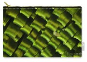 Butterfly Wing Scales Carry-all Pouch