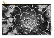 Cactus 10 Bw Carry-all Pouch