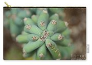 Cactus 25 Carry-all Pouch