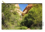 Calf Creek Falls Canyon Carry-all Pouch