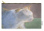 Calico Walking Carry-all Pouch