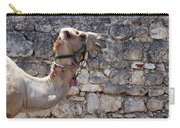 Camel At Sebastia Carry-all Pouch