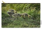 Canadian Goose Gosslings Carry-all Pouch