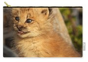 Canadian Lynx Kitten, Alaska Carry-all Pouch