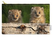 Canadian Lynx Kittens Looking Carry-all Pouch