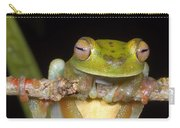 Canal Zone Tree Frog Carry-all Pouch