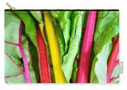 Candy Color Greens Carry-all Pouch by Susan Herber