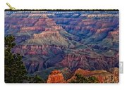 Canyon View X1 Carry-all Pouch