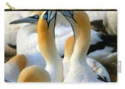 Cape Gannet Courtship Carry-all Pouch by Bruce J Robinson