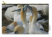Cape Gannets Carry-all Pouch