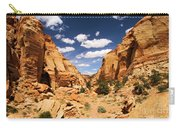 Capitol Reef Cohab Canyon Carry-all Pouch
