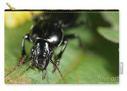 Carabid Beetle Rootworm Rredator Carry-all Pouch