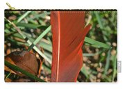 Cardinal Feather Carry-all Pouch