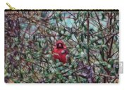 Cardinal Feb 2012 Carry-all Pouch
