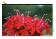 Cardinal Flower Close Up Carry-all Pouch