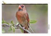 Cardinal On Pope Carry-all Pouch