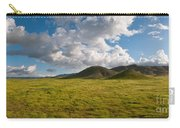 Carrizo Plain National Monument Carry-all Pouch