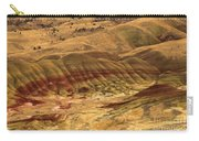 Carroll Rim Painted Hills Carry-all Pouch