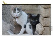Cat Guardians Carry-all Pouch