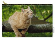 Cat Hanging On A Limb Carry-all Pouch