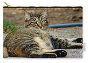 Cat Nap Interuption Carry-all Pouch