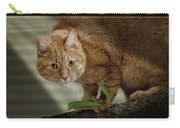 Cat Out On A Limb Carry-all Pouch