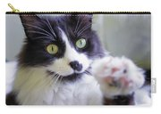 Cat Reaches For Camera Carry-all Pouch