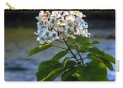 Catalpa Beauty Carry-all Pouch