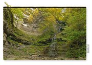Cathedral Falls West Virginia Carry-all Pouch