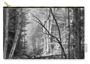 Catskill Brook, 1873 Carry-all Pouch