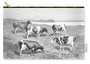 Cattle, 1888 Carry-all Pouch