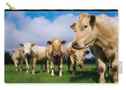 Cattle, Charolais Carry-all Pouch