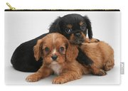 Cavalier King Charles Spaniel Puppies Carry-all Pouch by Jane Burton