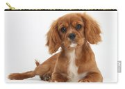 Cavalier King Charles Spaniel Puppy Carry-all Pouch