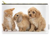 Cavapoo Pup, Rabbit And Ginger Kitten Carry-all Pouch by Mark Taylor
