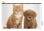 Cavapoo Puppy And Kitten Carry-all Pouch