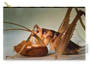 Cave Cricket Feeding On Almond Carry-all Pouch