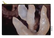 Cave Formation Dripping Carry-all Pouch