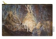 Cave Formations 31 Carry-all Pouch