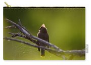 Cedar Waxwing Perched In Tree Carry-all Pouch