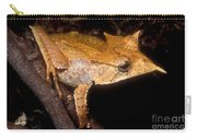 Central American Casque Headed Frog Carry-all Pouch