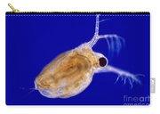 Ceriodaphnia Carry-all Pouch