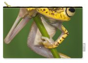 Chachi Tree Frog Hypsiboas Picturatus Carry-all Pouch