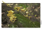 Chanterelles 8681 Carry-all Pouch