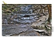 Chasing The Eternal Flame At Chestnut Ridge Park Carry-all Pouch
