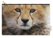 Cheetah Acinonyx Jubatus Ten To Twelve Carry-all Pouch