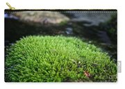 Chia Rock Carry-all Pouch