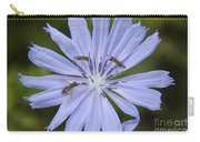 Chicory For Three Carry-all Pouch