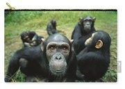 Chimpanzee Pan Troglodytes Female Carry-all Pouch